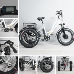 Электрический трехколесный велосипед с двигателем BAFANG 48V500W