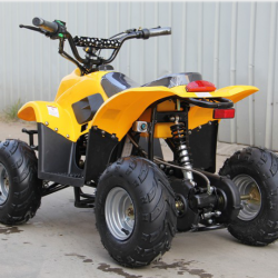 Электроквадроцикл CS-E7015 36V 12Ah 500W/800W/1000W
