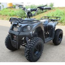 Электроквадроцикл CS-E9057 36V 12Ah 500W/800W/1000W