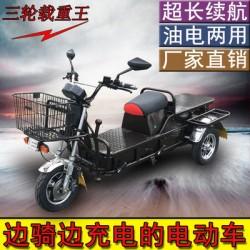 Гибридный трехколесный грузовой скутер tg-zoom