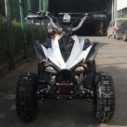 Электроквадроцикл CS-E7054